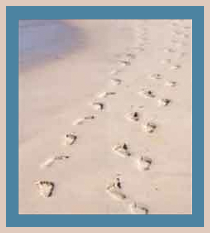 LEAVING DIFFERENT FOOTPRINTS IN THE SAND