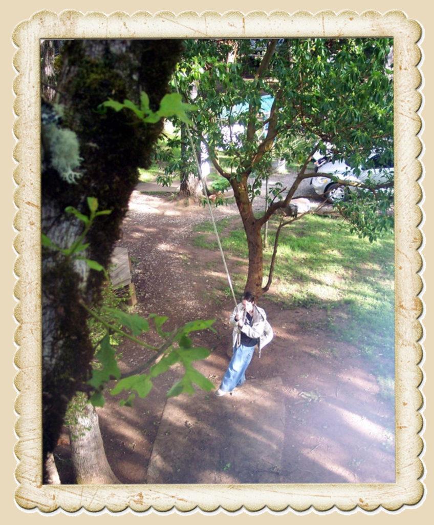 Sam on the swing
